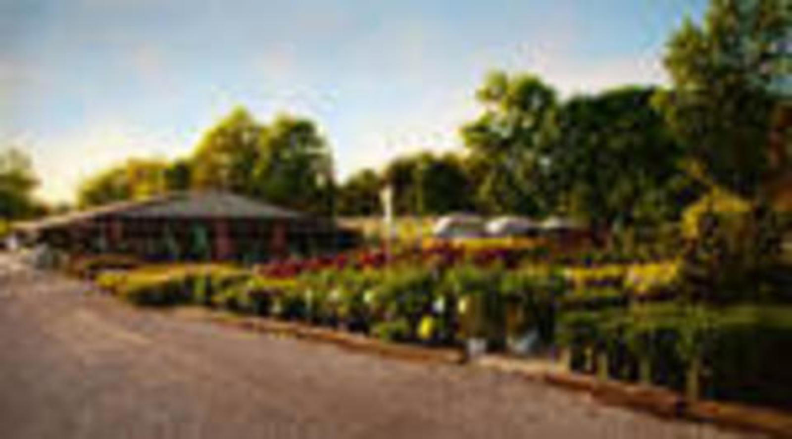 About Our Garden Center in Akron